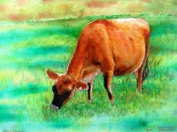 mecox-farm-cow-bridgehamptton_0